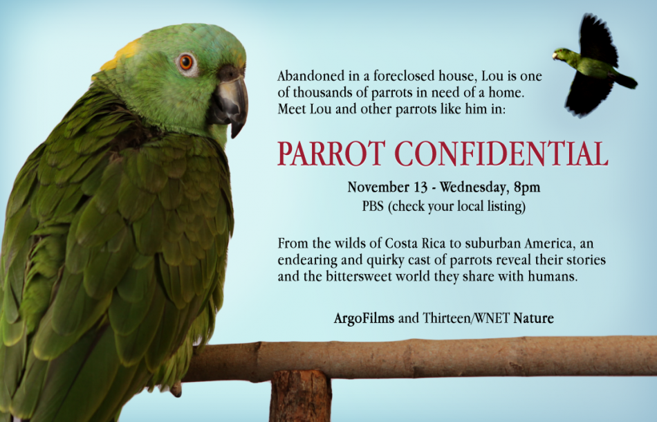 Parrot Confidential Announcement